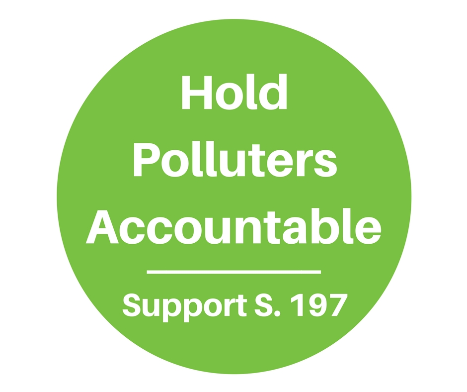 Hold Polluters Accountable